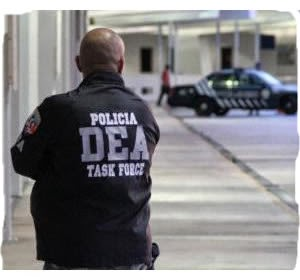 Federal agencies arrests