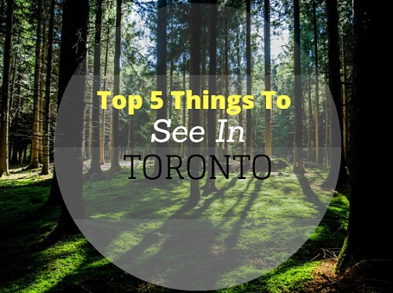Top 5 Things to See in Toronto, Canada