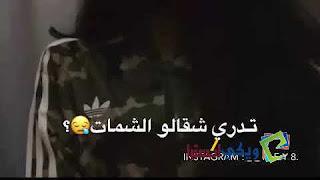 كلمات اغنية تدري شقالو الشمات