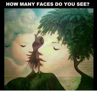 Hidden Faces Puzzle