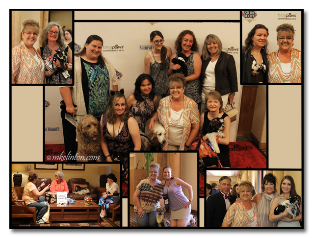 A collage of photos from the BlogPaws 2016 conference