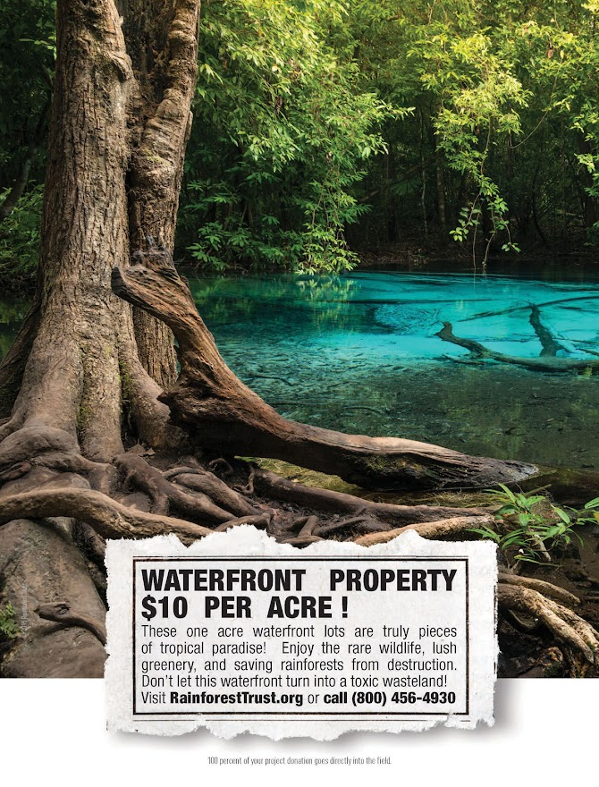 Fundraising Disguised As Real Estate Advertising for OOH Rainforest Trust Campaign