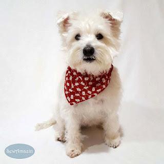 Love Letters Valentine Dog Bandana, Red Hearts