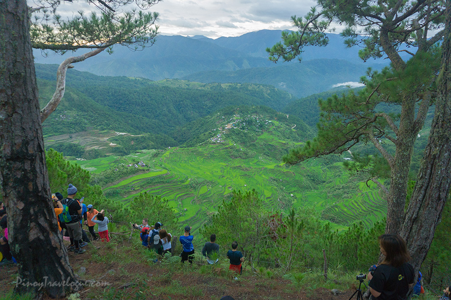 Maligcong Rice Terraces viewed from Mt. Kupapey's summit