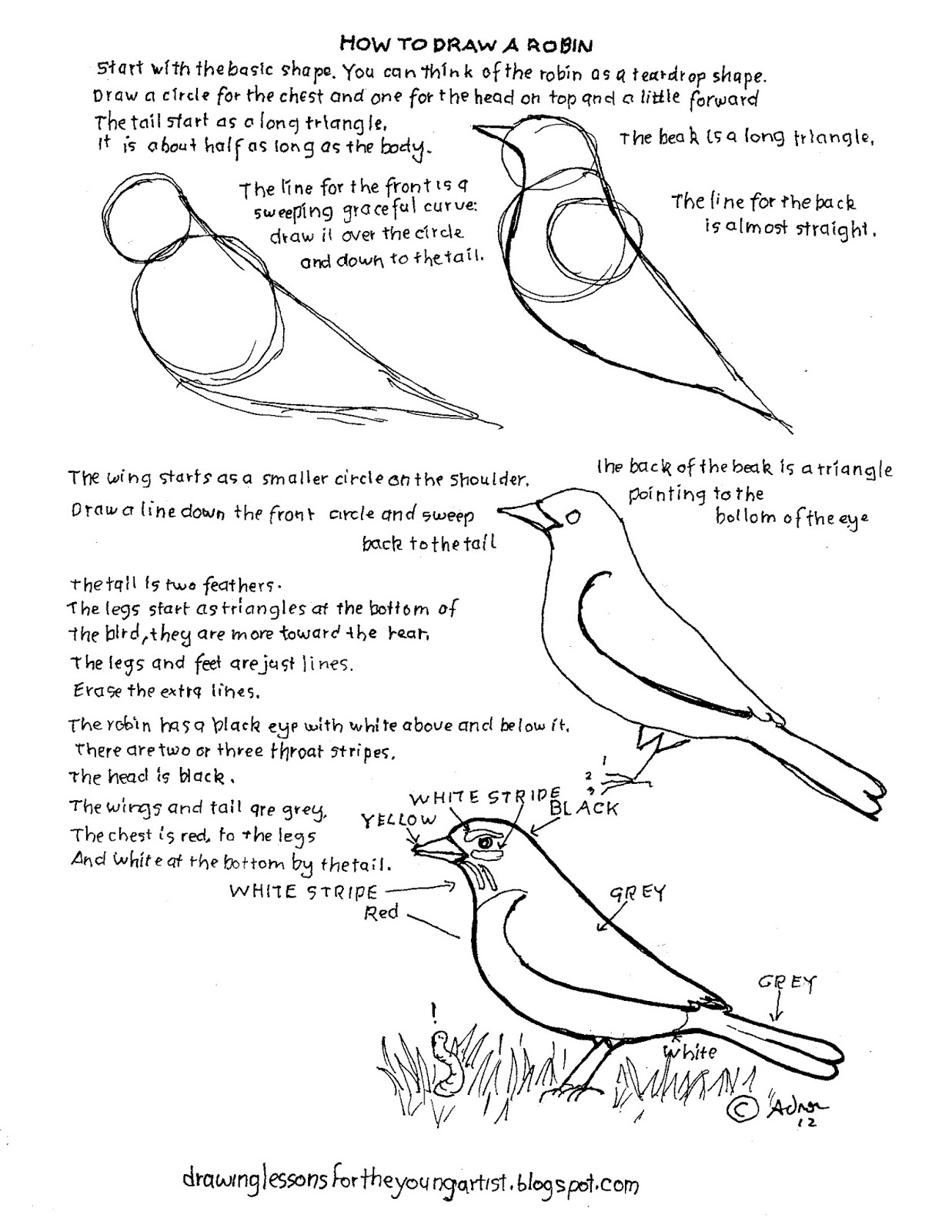 worksheet Drawing Worksheets how to draw worksheets for the young artist a robin printable worksheet