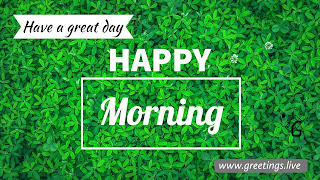 Happy Morning wishes green leafs background HD