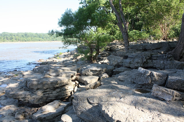Exposed fossil beds at the Falls of the Ohio State Park in Indiana
