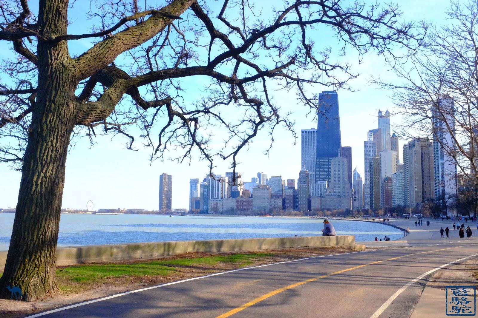 Le Chameau Bleu - Blog Voyage Chicago USA -  Parc de Chicago - Séjour à Chicago Illinois USA