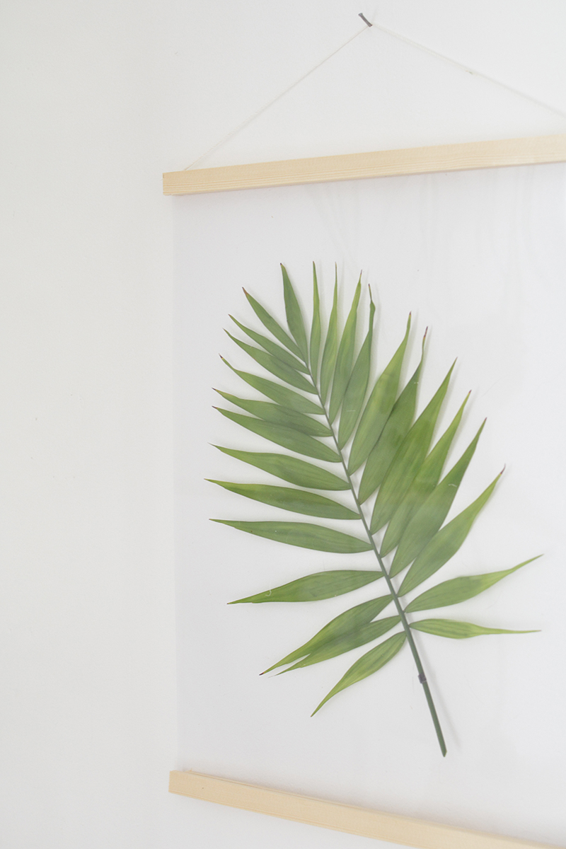 DIY botanical picture frames
