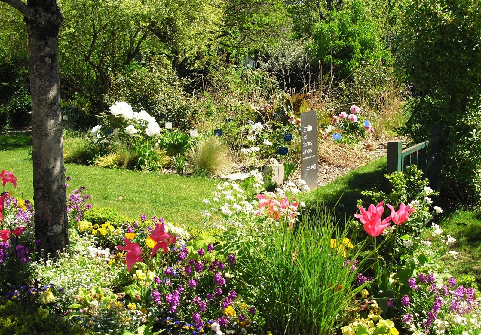Mon petit jardin en sologne le jardin botanique de tours for Jardin botanique 2016