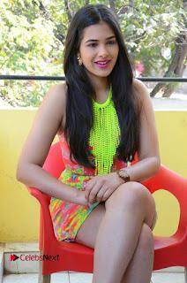 Telugu Actress Prasanna Stills in Short Dress at Inkenti Nuvve Cheppu Press Meet Stills  0157.JPG
