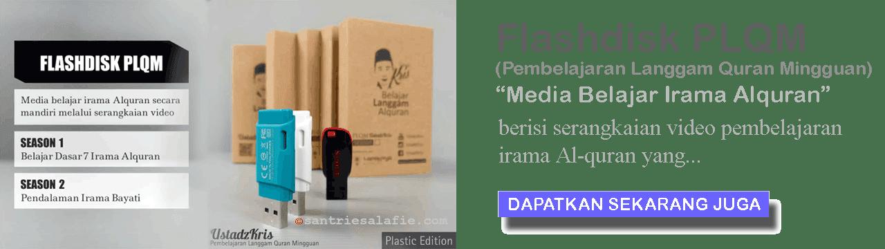 Flash Disk PLQM