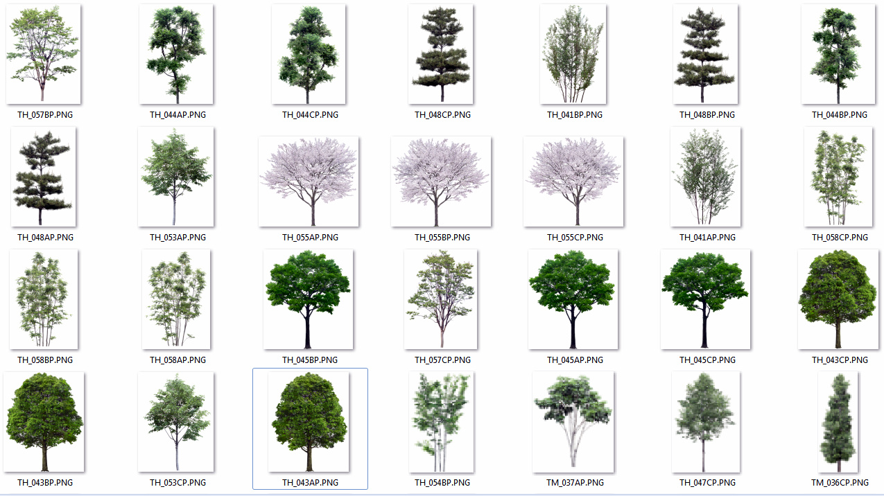 Imagem Vetorial Gratis Mapa Pinos Illustrator Titular: Pc Score-games Programas: ARBOLES PNG PARA PHOTOSHOP