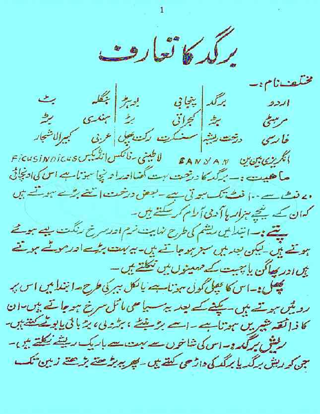 Khawas e Bargad Tibi Istamal Aur Dawa o Elaj