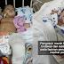 Bayi patah tulang paha, terkehel kaki kiri dan lebam di beberapa bahagian badan