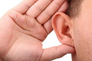 Terapi Lintah Mengobati Masalah Pendengaran