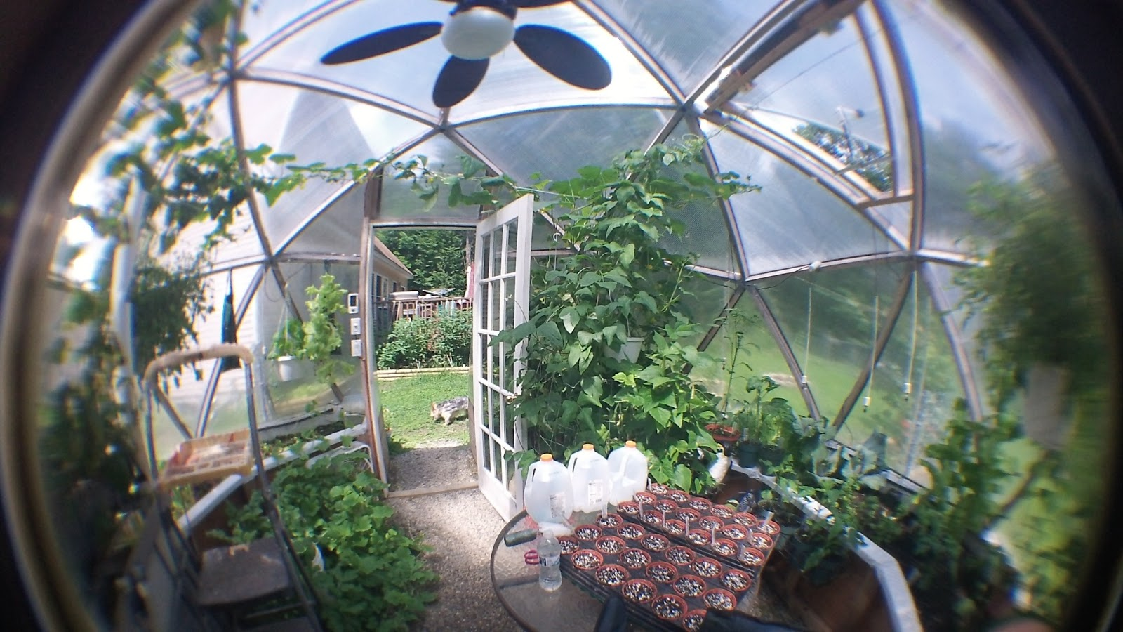 Alex S Geodesic Dome Greenhouse