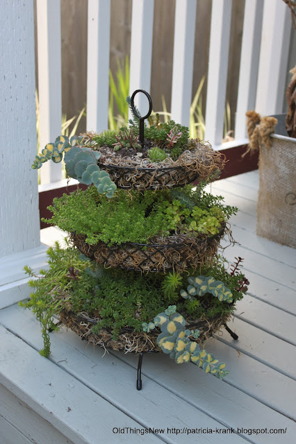 Three-tier succulent planter