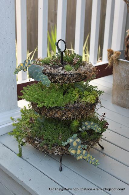 Three-tier succulent planter