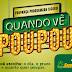Esporte| Palmeiras vence Chapecoense e é campeão brasileiro após 22 anos