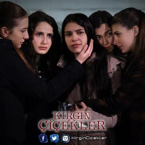 antv turkish drama tv