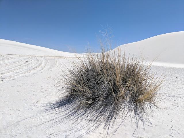 """Національний монумент""""Білі Піски""""(White Sands National Monument)"""