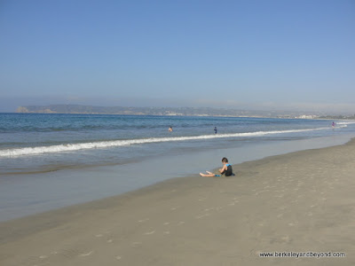 beach in front of Hotel del Coronado in San Diego, California