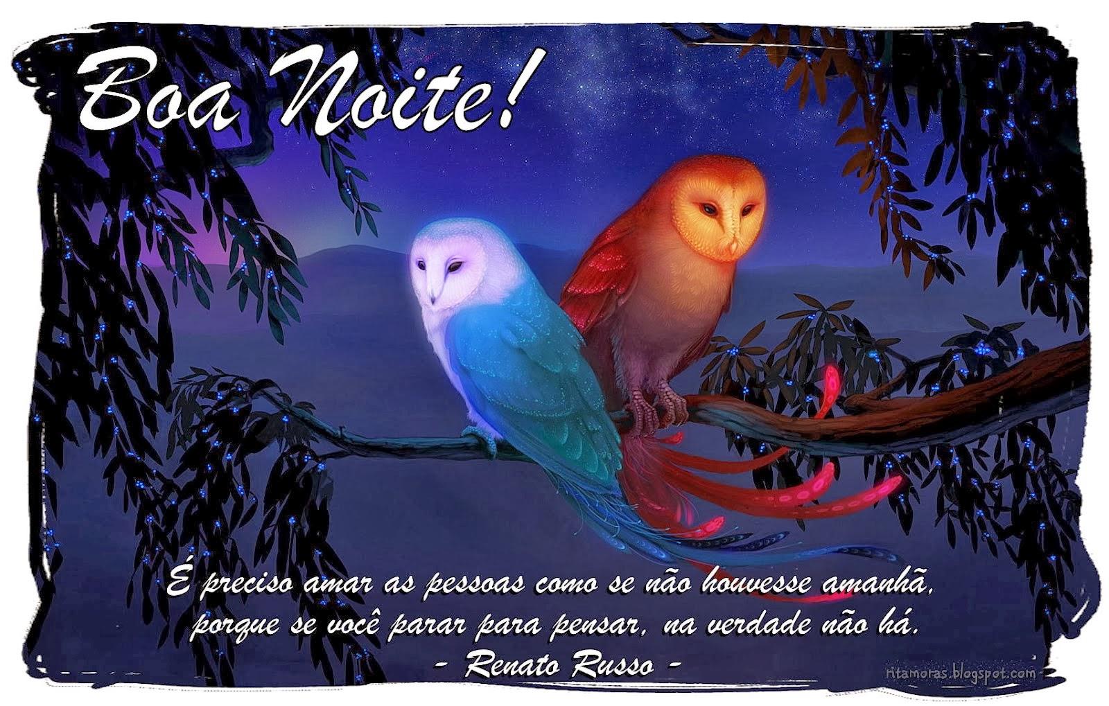 Frases Para Boa Noite: Boa Noite Mensagens Variadas