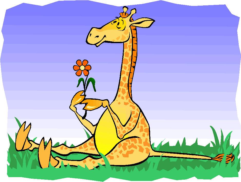Gifs De Animales: Gifs De Jirafas