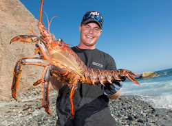 Here Is Where To Get Spiny Lobster In San Diego