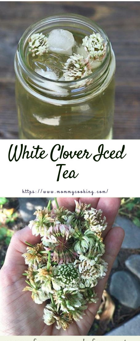 White Clover Iced Tea #drink #tearecipe