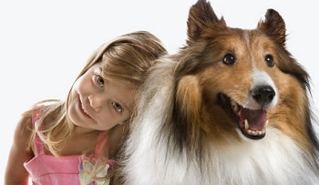 How to Choose Good Dog Breeds For Children