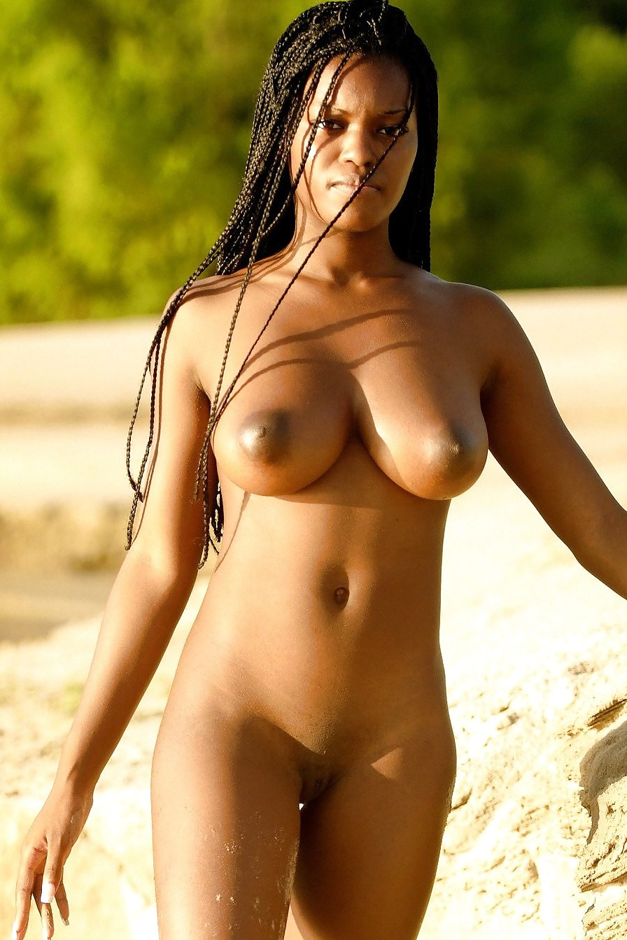 Ebony black beauty nude