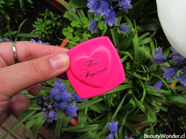 love flush blush too faced review
