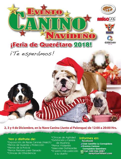 evento canino feria querétaro 2018