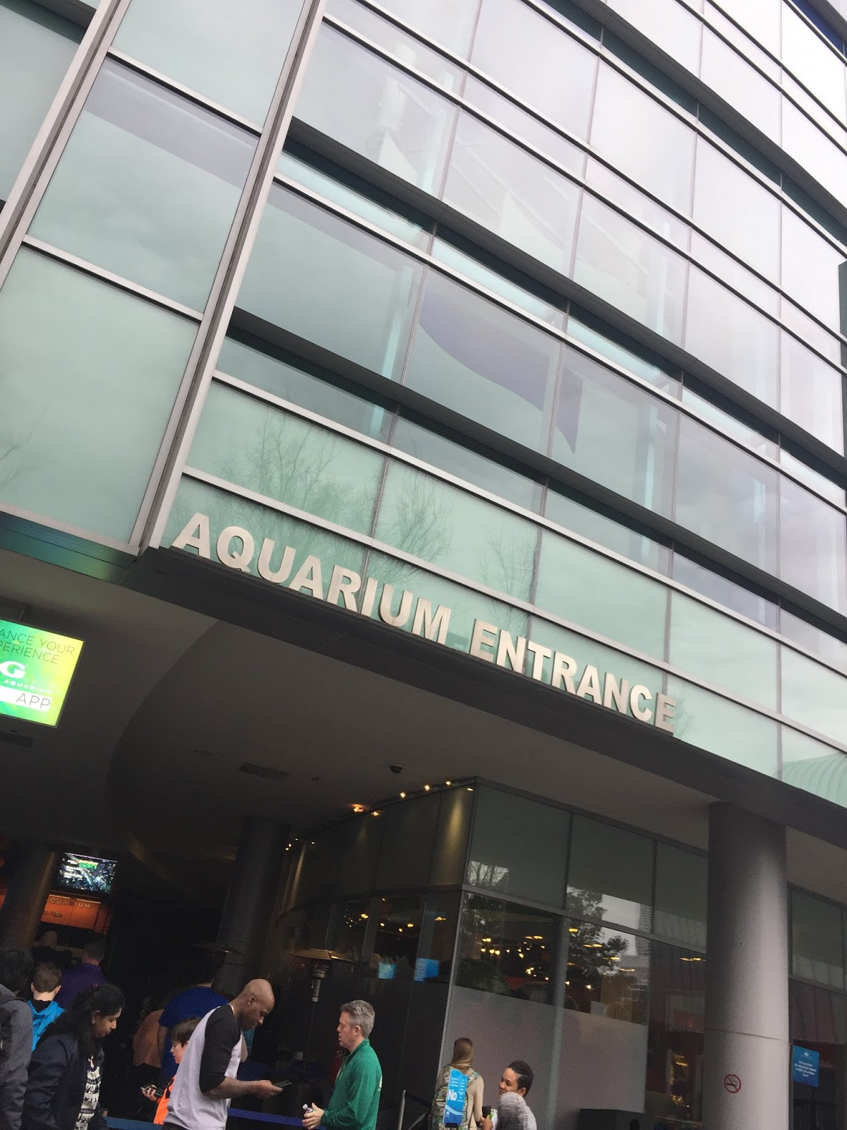 Family Day at Georgia Aquarium Feb 2017