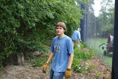 Buckthorn removal Kyle
