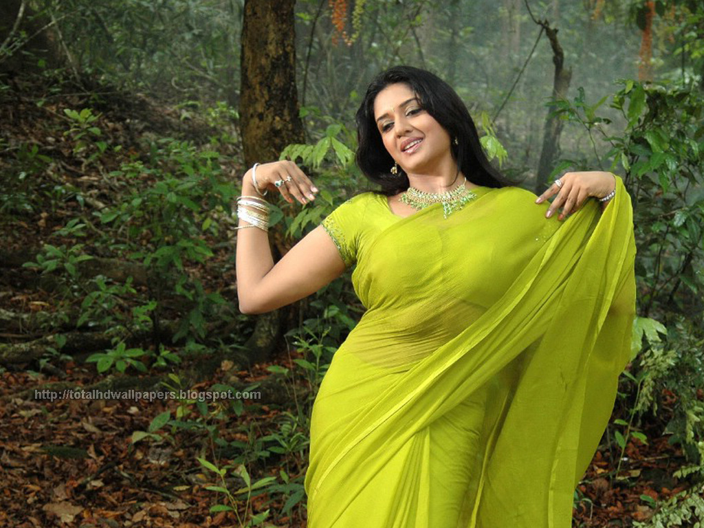 Bollywood Actress High Quality Wallpapers South Indian -6849