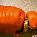 82-Year-Old Man Loses Wedding Ring, Finds It In Carrot From His Garden