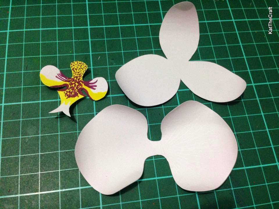 orchid paper flower template