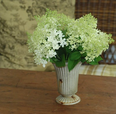 Vineyard Distressed Vases | Pier 1 Imports | Faux ... |Country Hydrangeas Vase