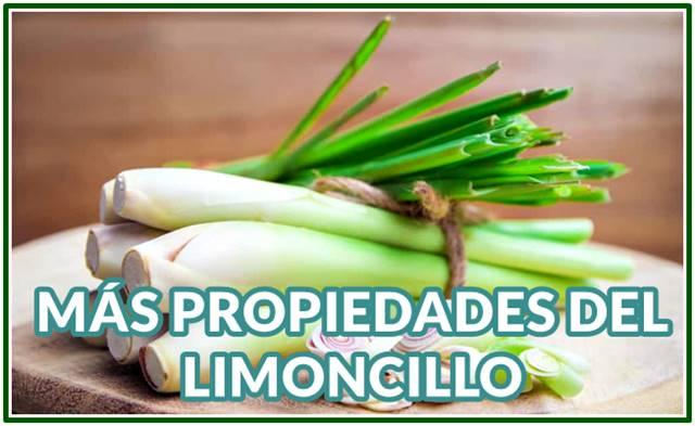 Propiedades increíbles del Limoncillo para la salud