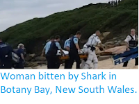 http://sciencythoughts.blogspot.com/2018/02/woman-bitten-by-shark-in-botany-bay-new.html