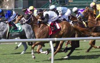 Wallpaper: Del Mar Horse Races