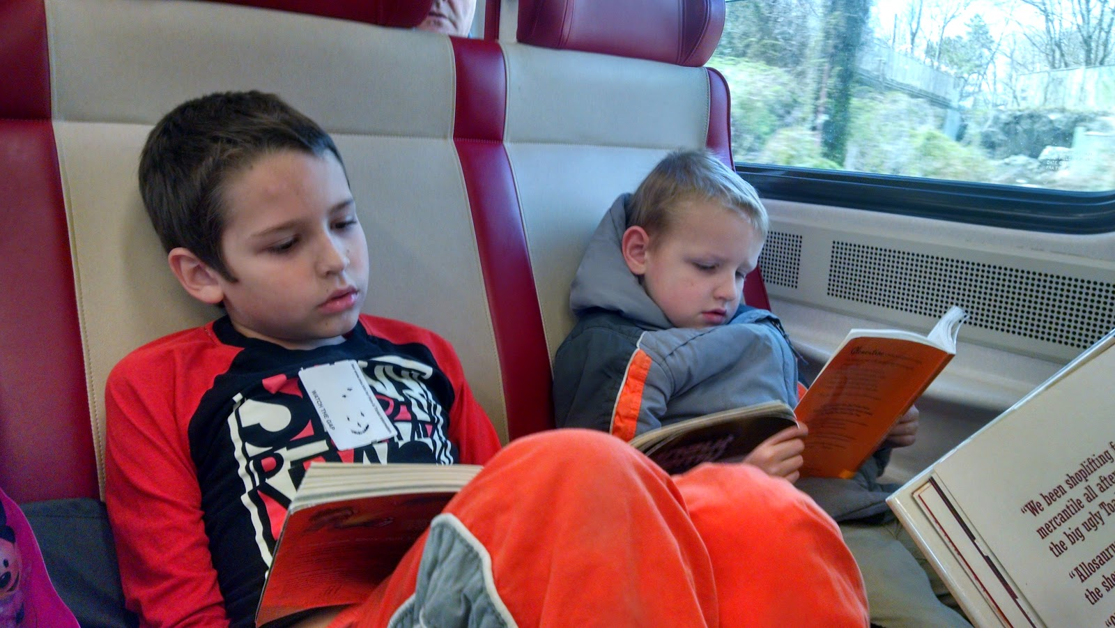 Everead Reading On The Train