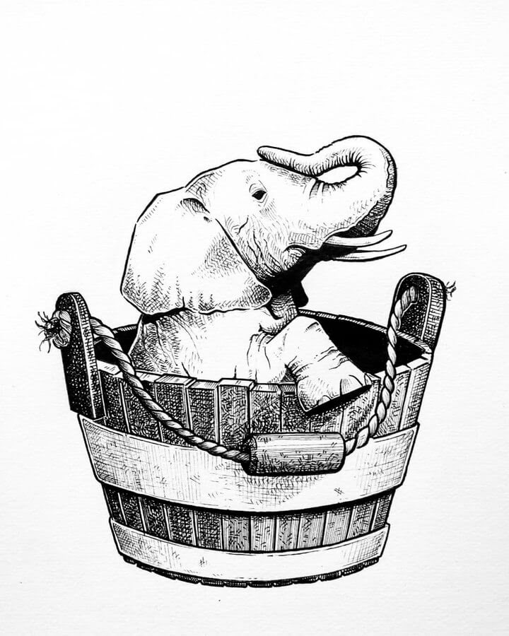 01-Elephant-in-a-tub-Diana-Sofia-Animal-Drawings-www-designstack-co