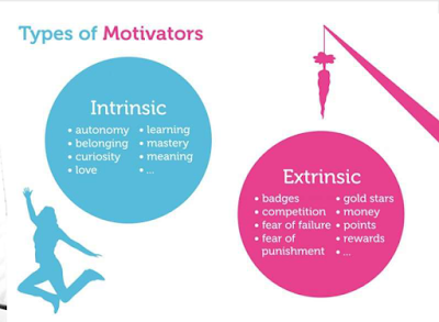 Manajemen Proyek - Project Human Resource Management Types Of Motivators