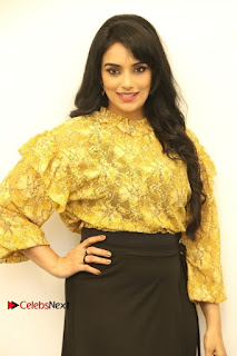 South Indian Actress Shweta Menon Stills at Inayathalam Audio Launch Stills  0016.jpg