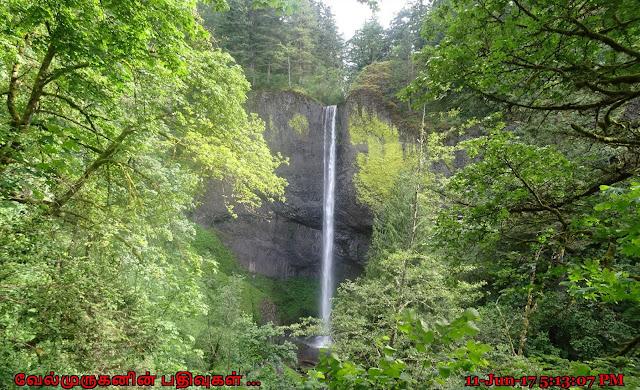 Latourell Falls Columbia River Gorge