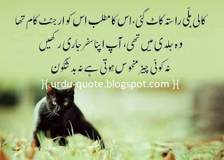 Urdu Lovely Quotes 51